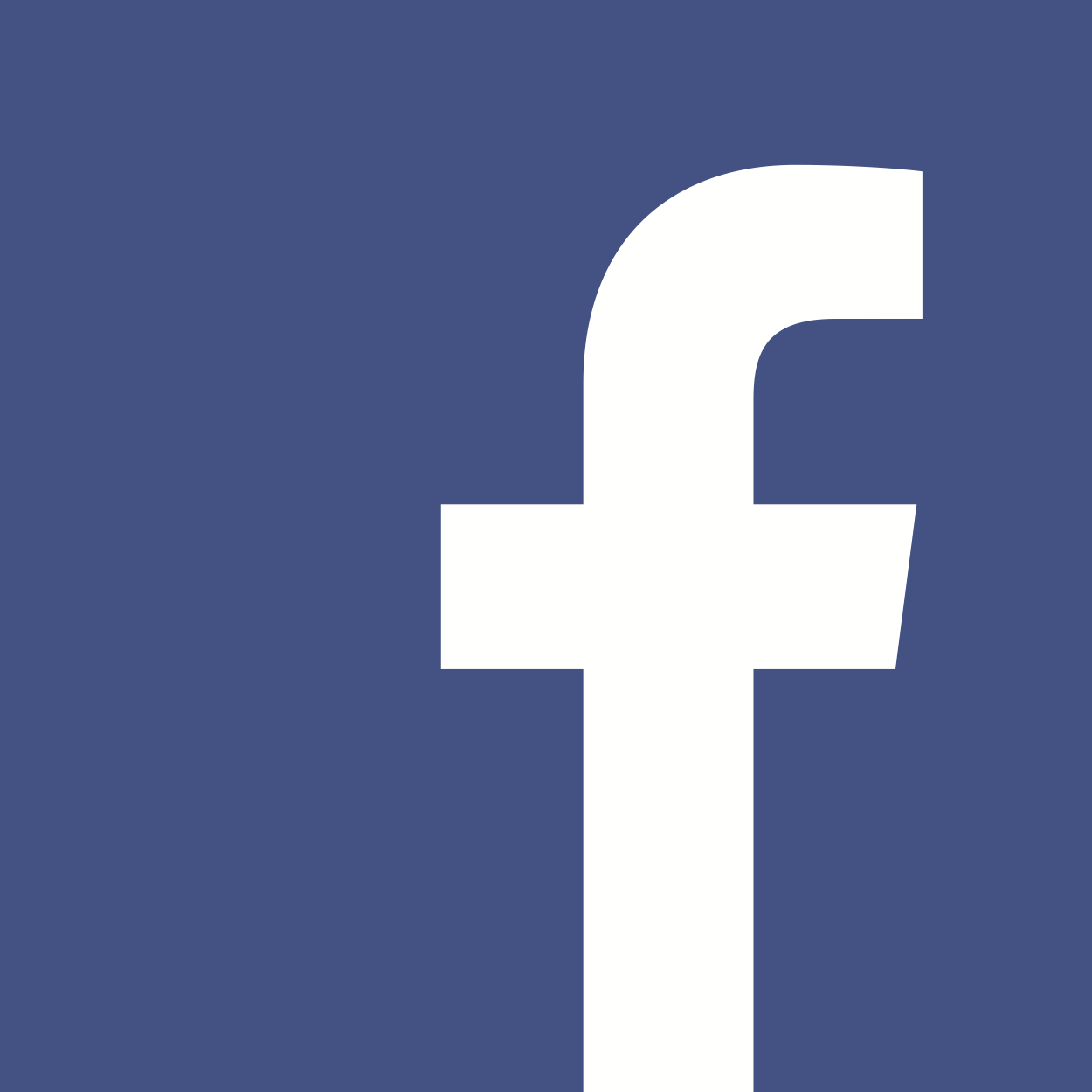 Facebook Logo Icon White