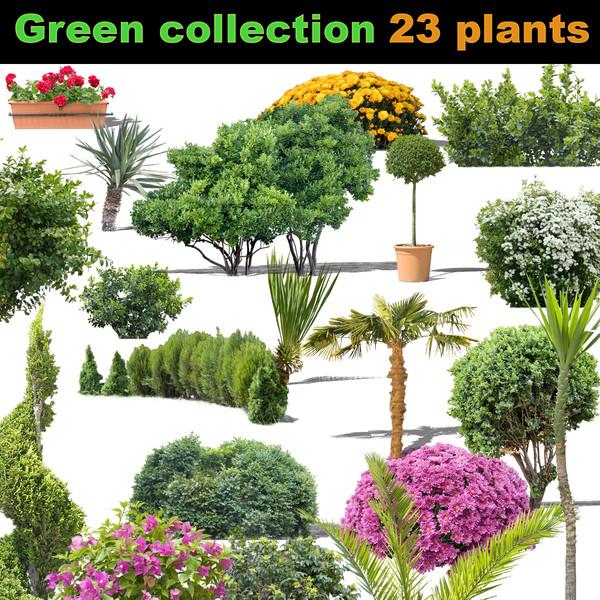 Plant PSD Textures