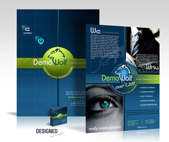 15 Professional Brochure Design Images