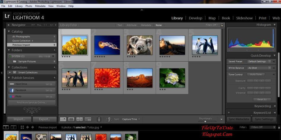 6 Adobe Photoshop Lightroom 4.3 Images