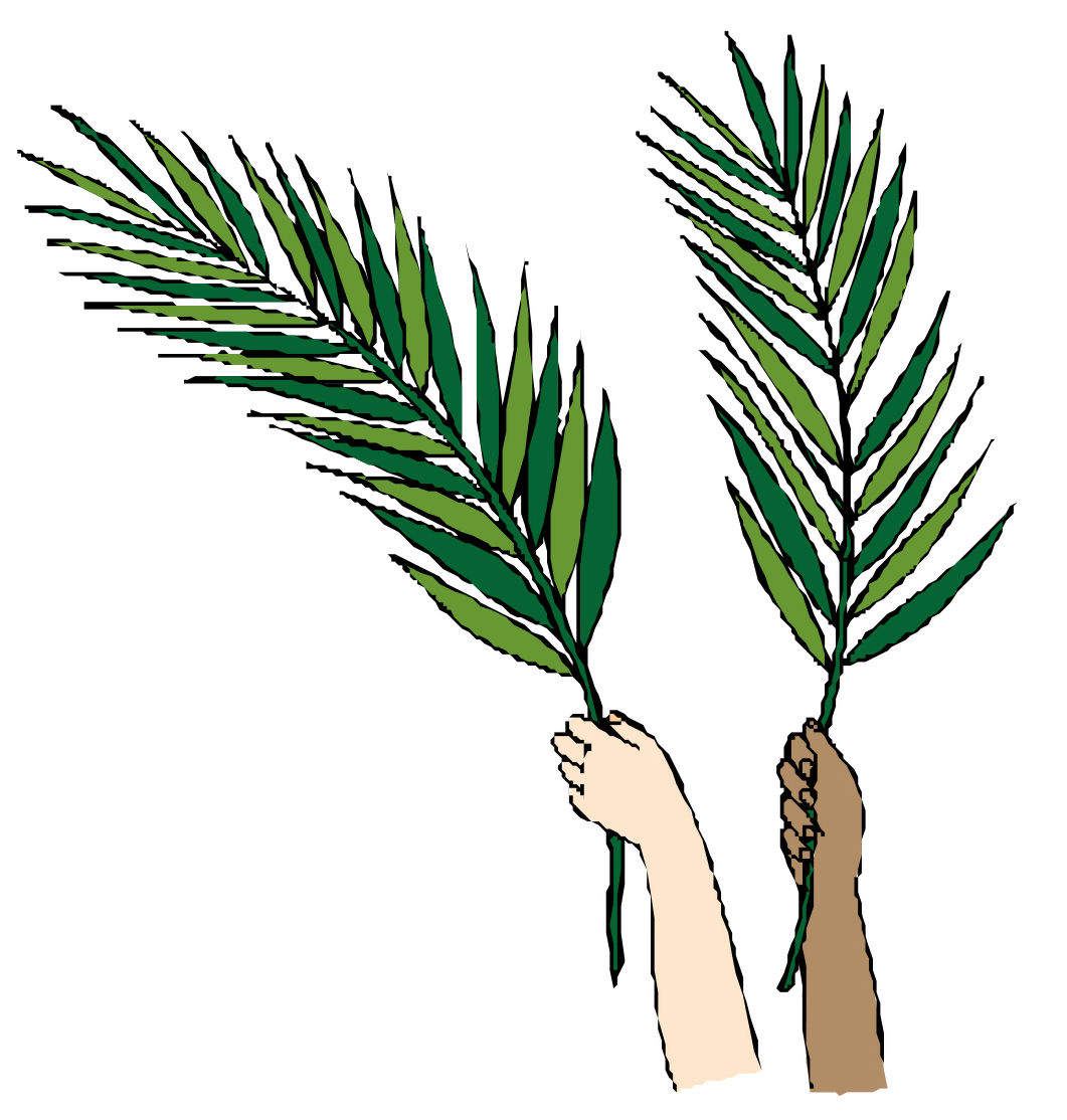 15 Palm Leaf Graphic Images
