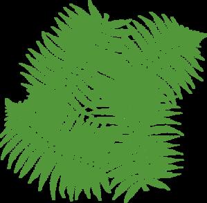 Fern Leaves Clip Art