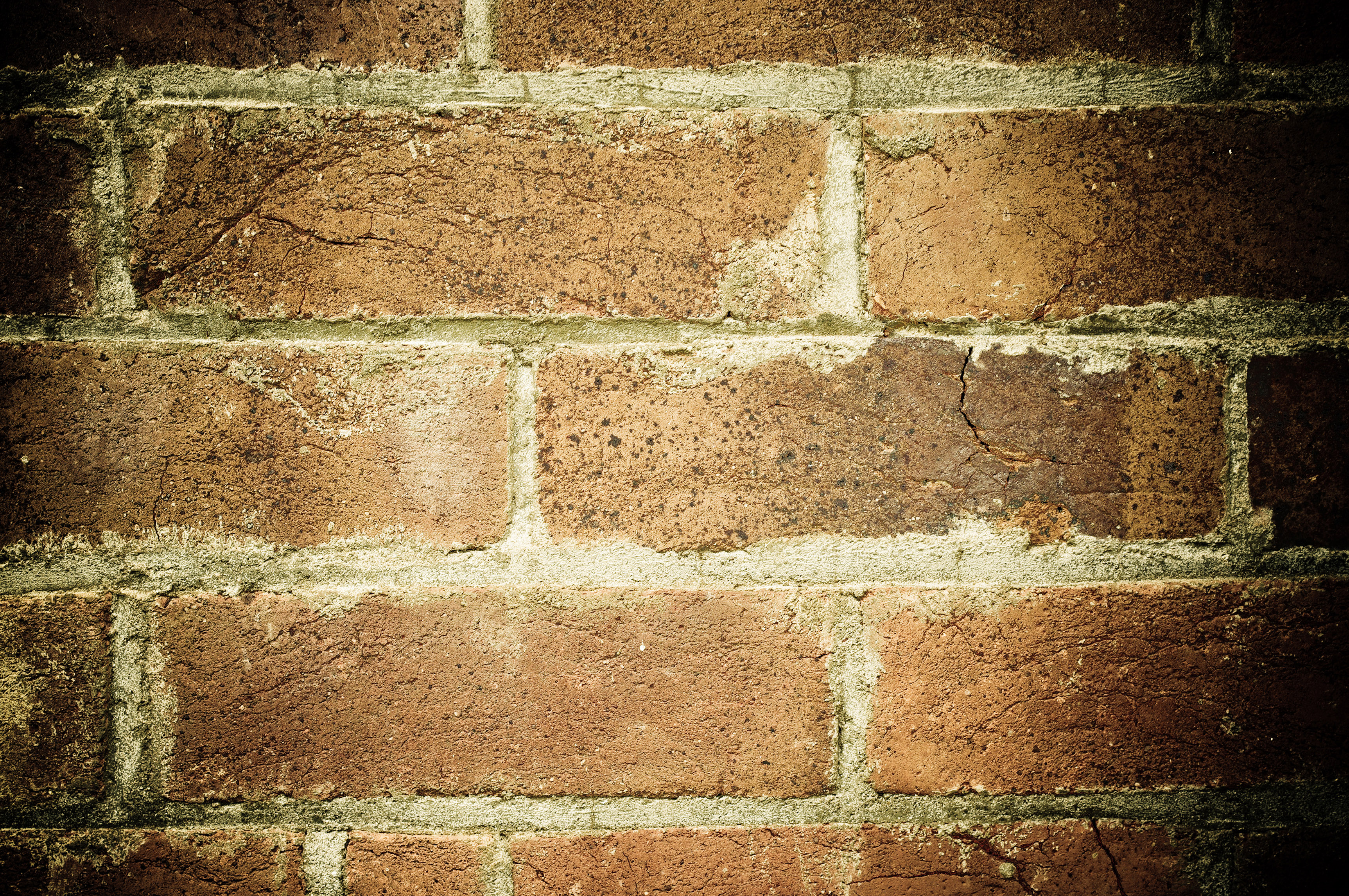 Free Old Brick Wall Texture
