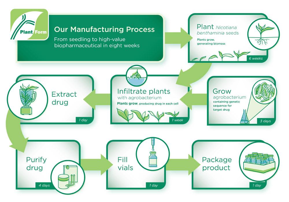 Manufacturing Process Diagram