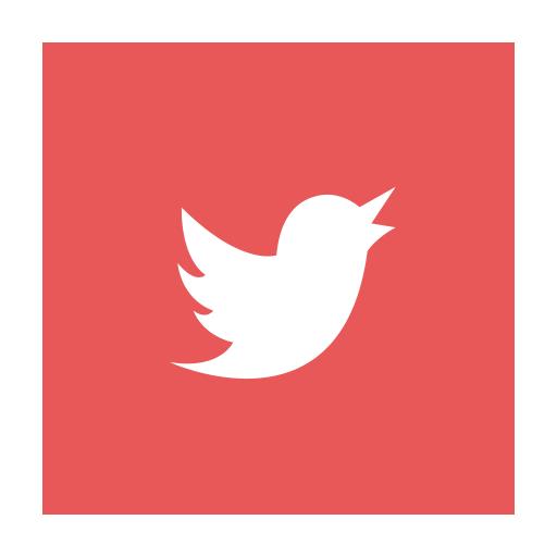 Media Social Twitter Icon