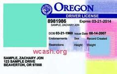 Oregon Driver License Template Photoshop