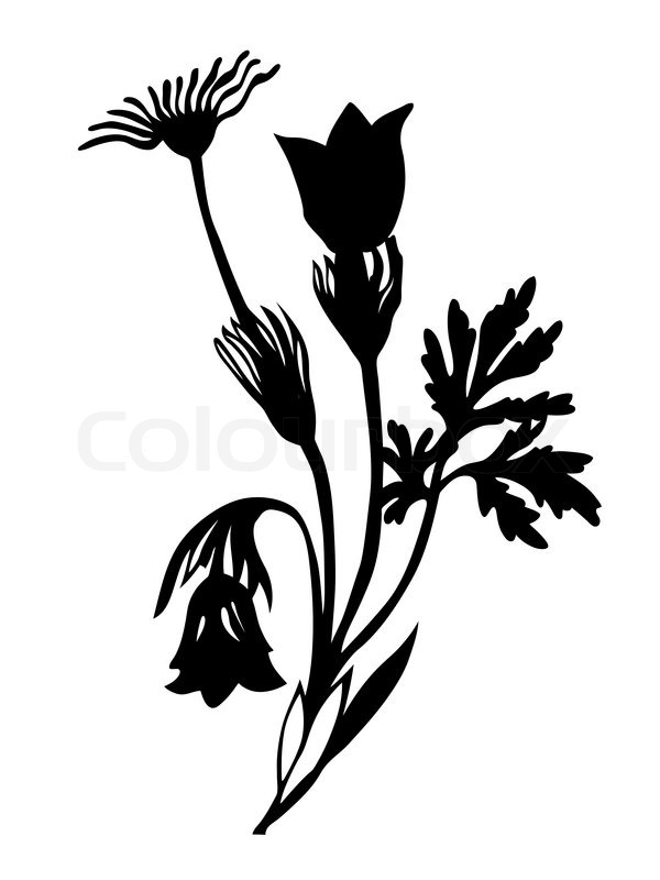 14 Flowers Silhouette Vector Background Images