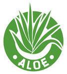 Vector Aloe Vera Plant