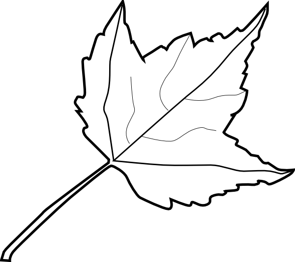 15 Leaf Outline Vector Images
