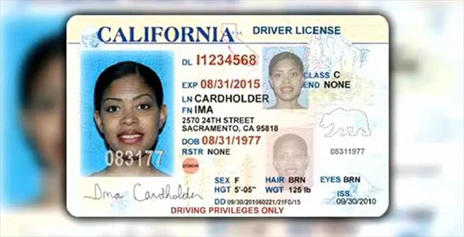 California State Drivers License