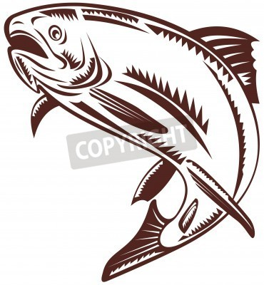 16 Trout Vector Free Images