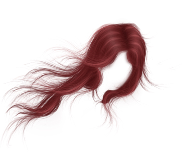 Hair for Photoshop PSD Files