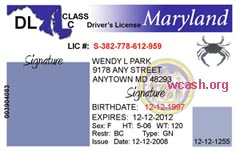 Maryland Driver's License Template