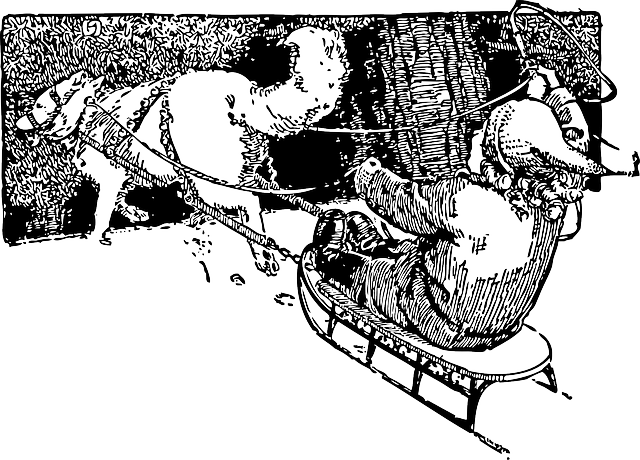 Dog Pulling Sled Clip Art Free