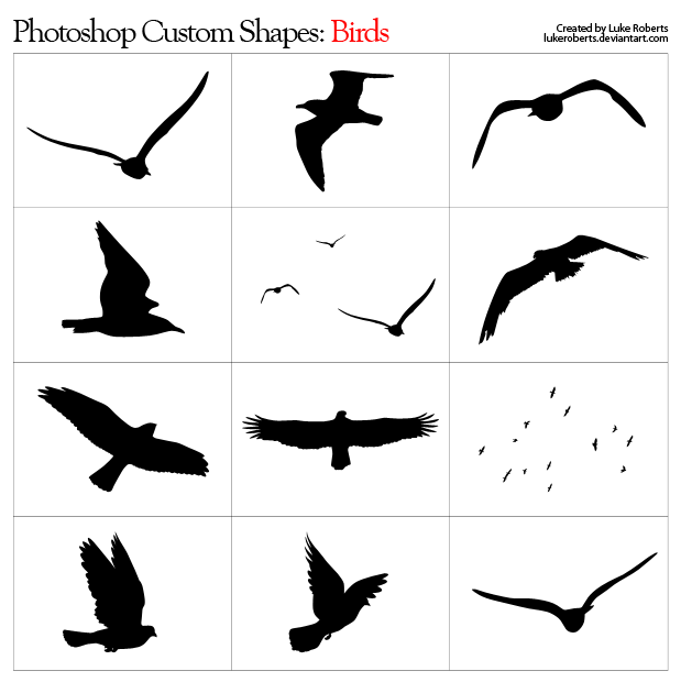 Flying Bird Shapes