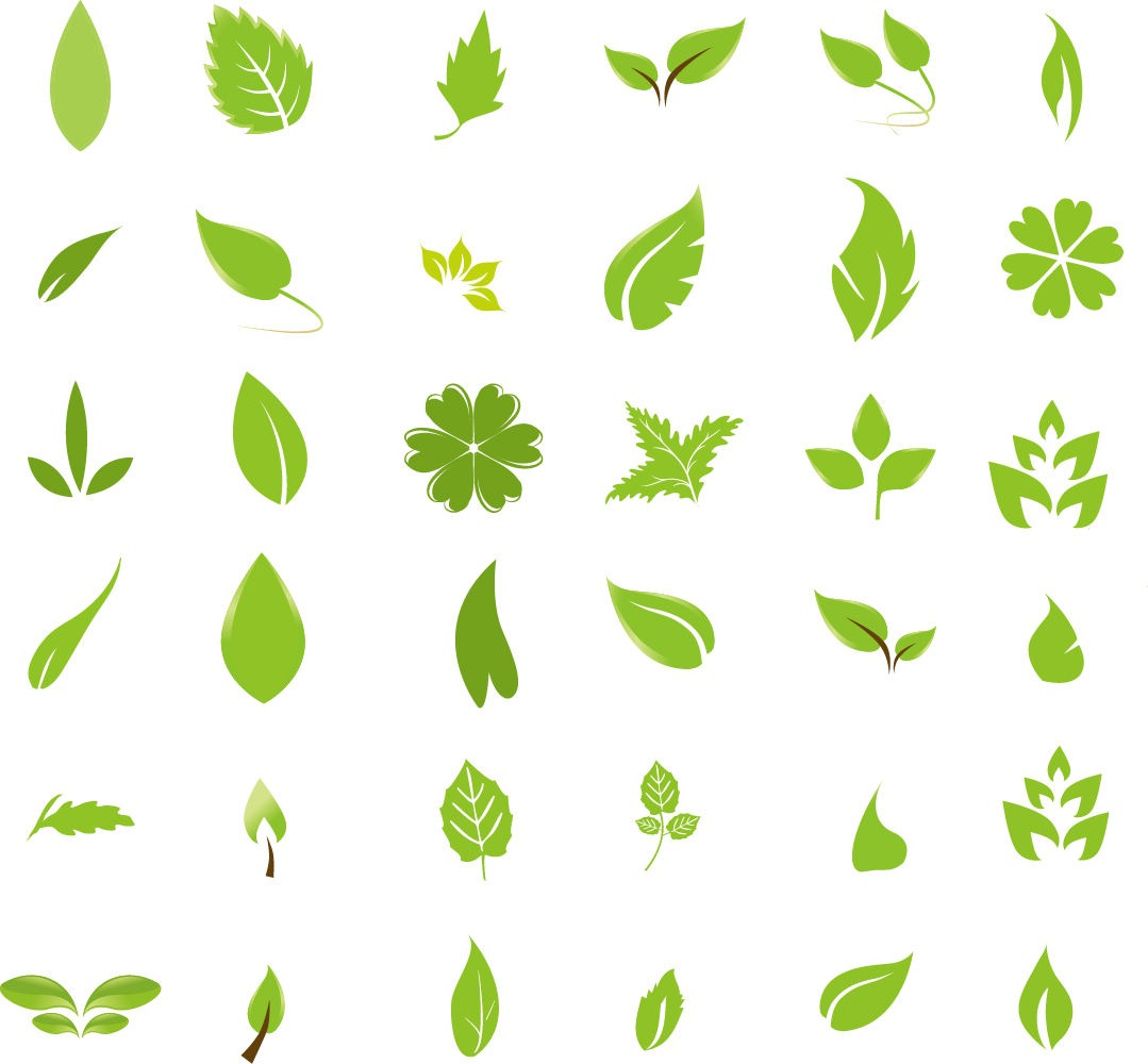 13 Green Vector Design Element Images