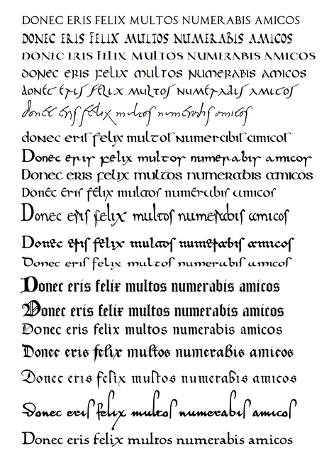9 Latin Calligraphy Font Images