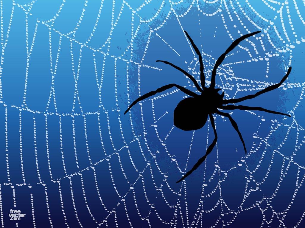 Spider Web Graphics