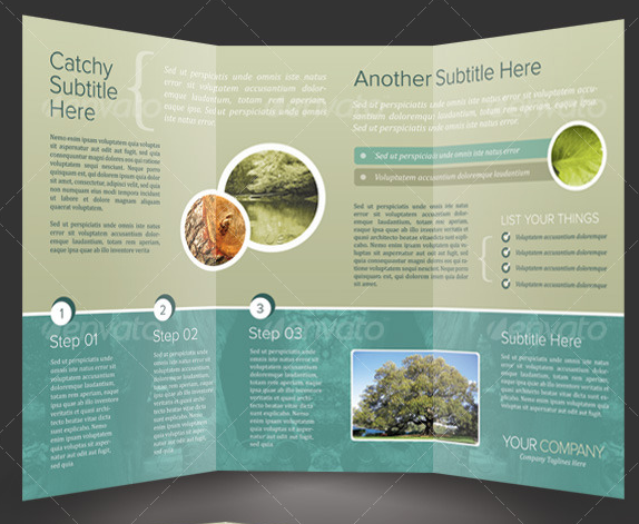 17 Tri-Fold Brochure Template PSD Images
