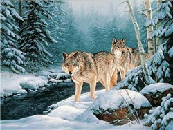 Wolf Screensavers and Desktop Themes