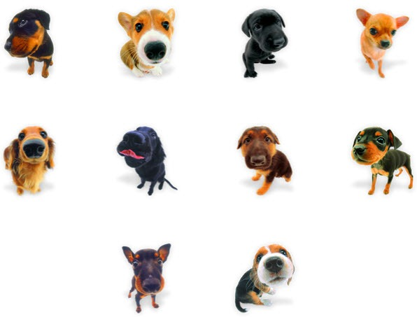 Cute Dog Icons