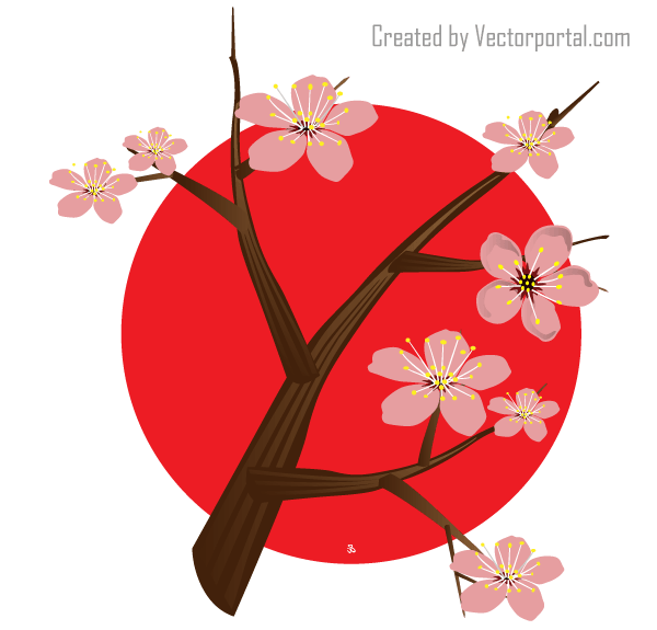 18 Japanese Cherry Blossom Vector 53 Images