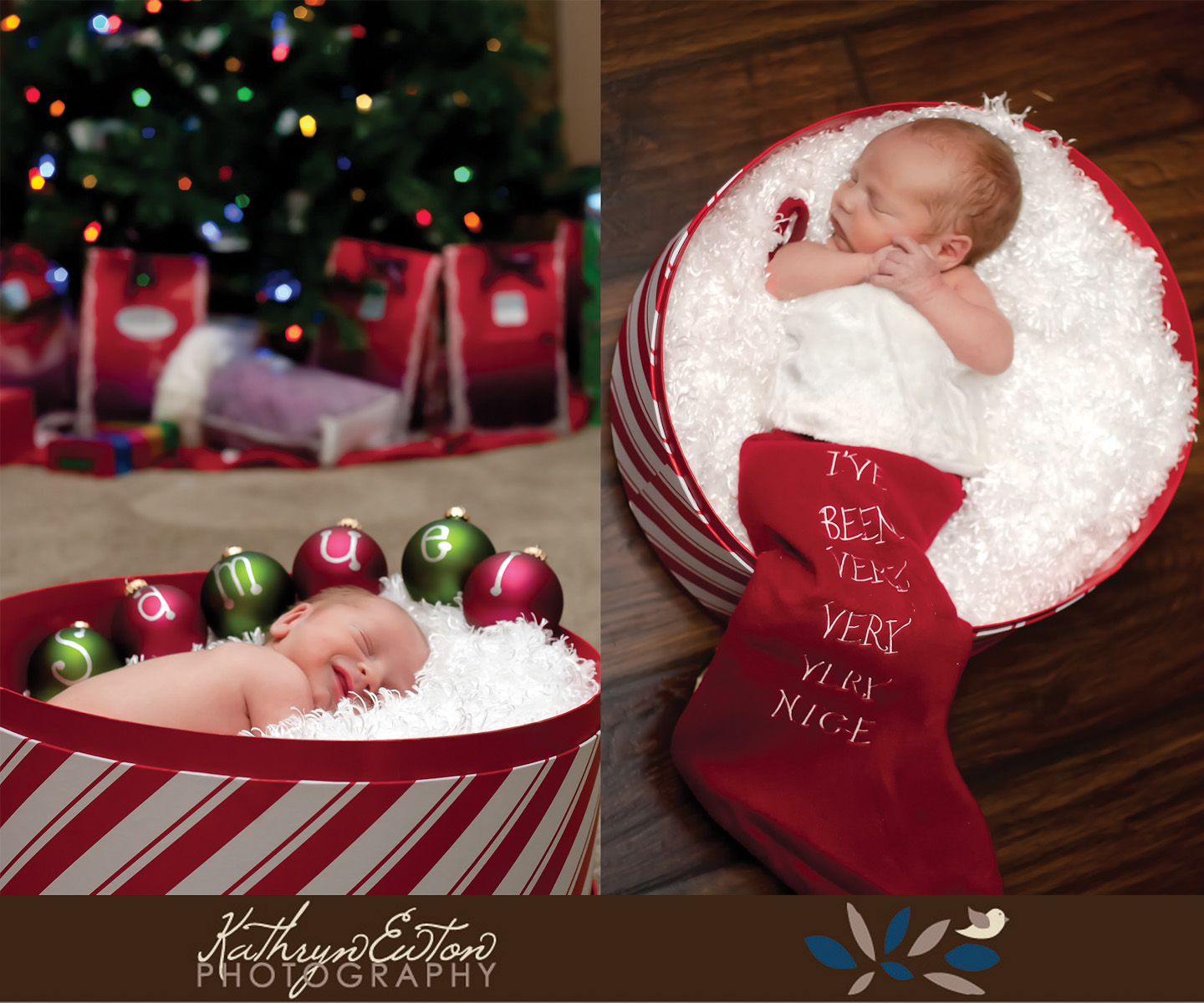 Newborn Christmas Photography