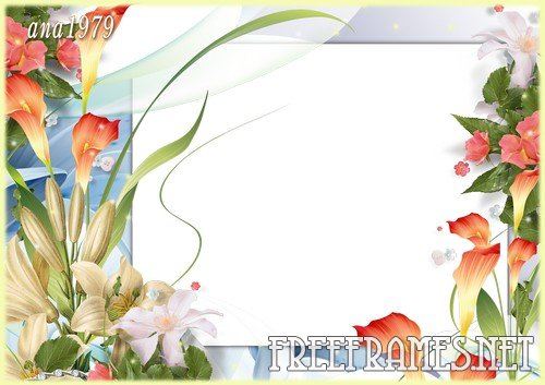 Colorful Adobe Photo Frame Free Download Images - Frames Ideas ...