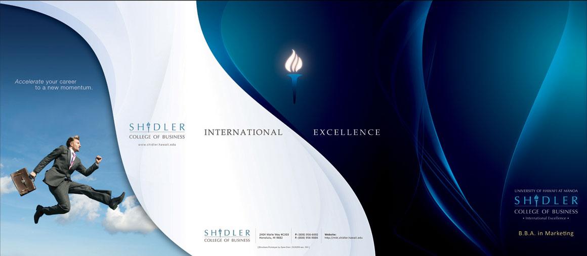 12 Tri-Fold Brochure Design Images