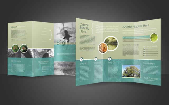 17 Brochure PSD Template Images