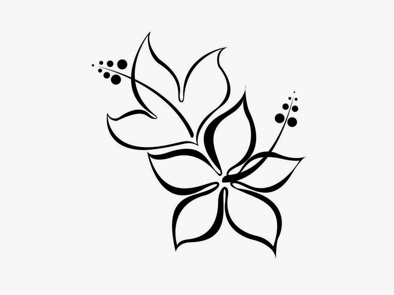 13 Black And White Simple Flower Designs Images Hibiscus Flower