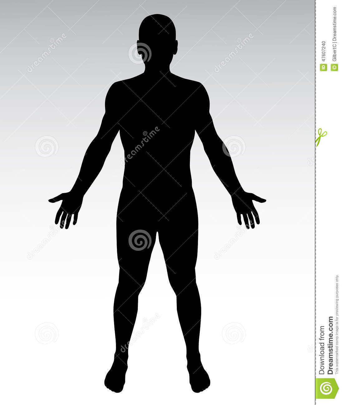 Human Body Silhouette Vector