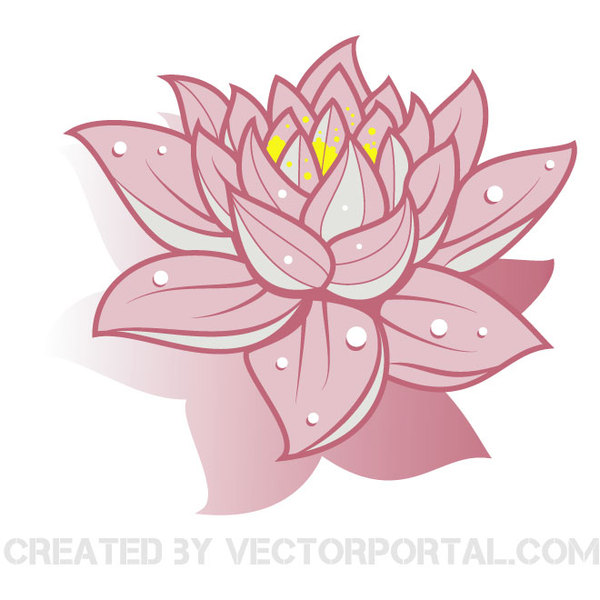 Lotus Flower Line Drawing Vector Free Download : Lotus flower vector free images