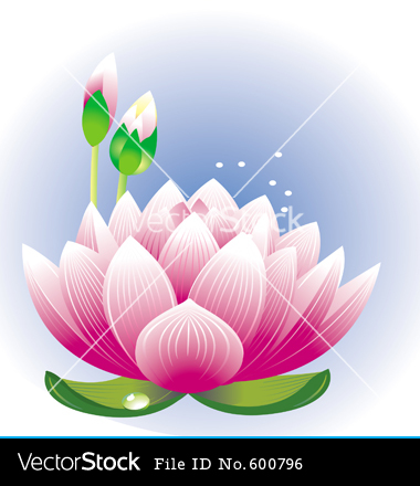 Lotus Flower Vector Art