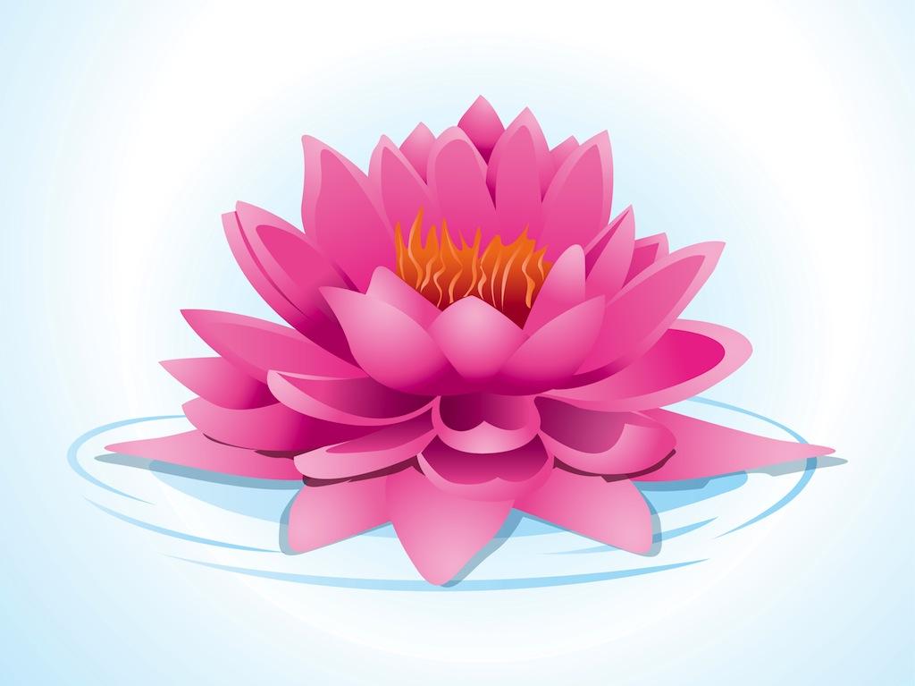 Pink Lotus Flower Clip Art