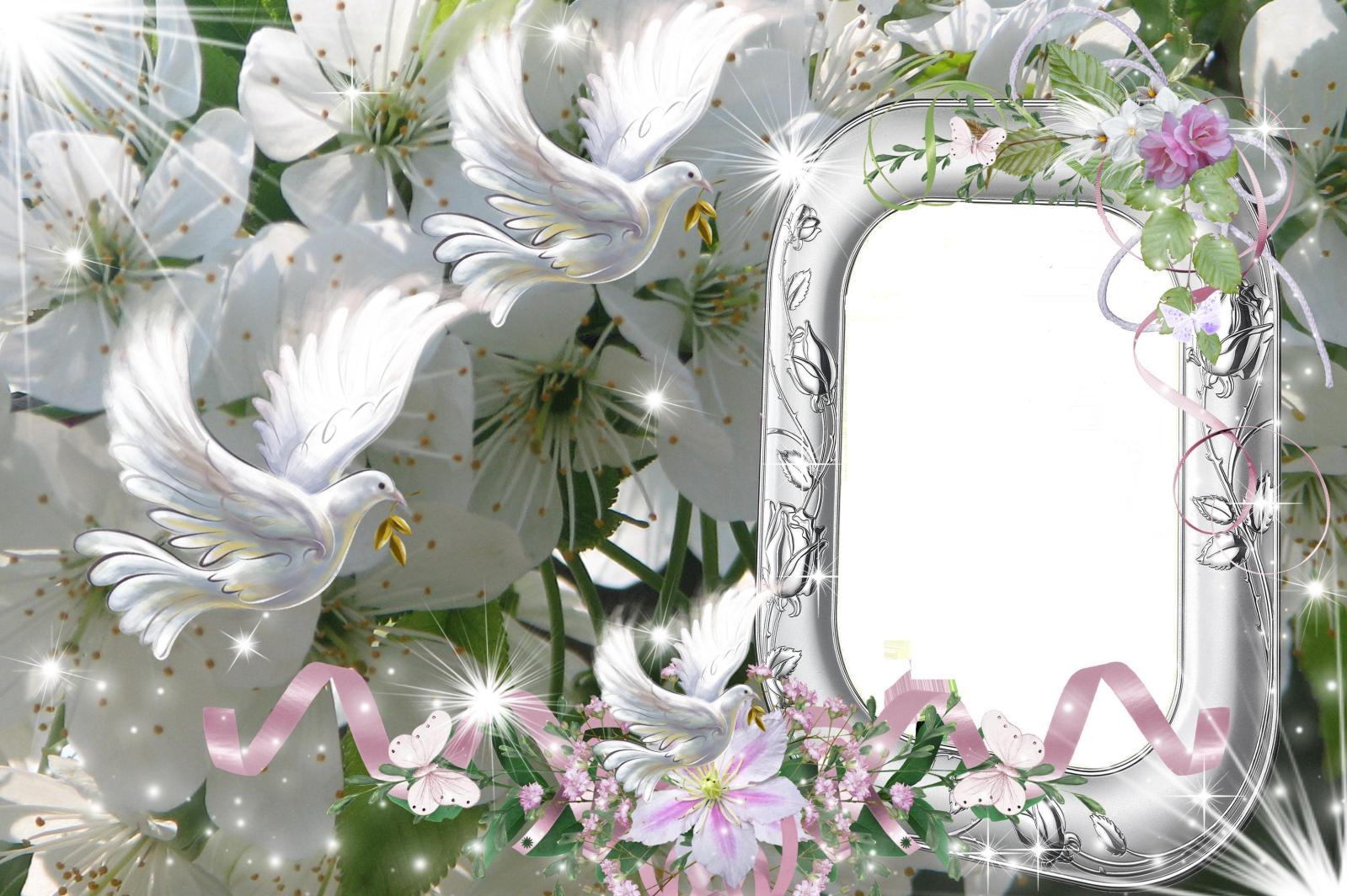 Wedding Frames PSD