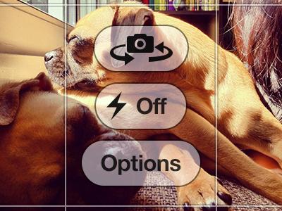13 PSD IPhone 5 Camera Screen Images