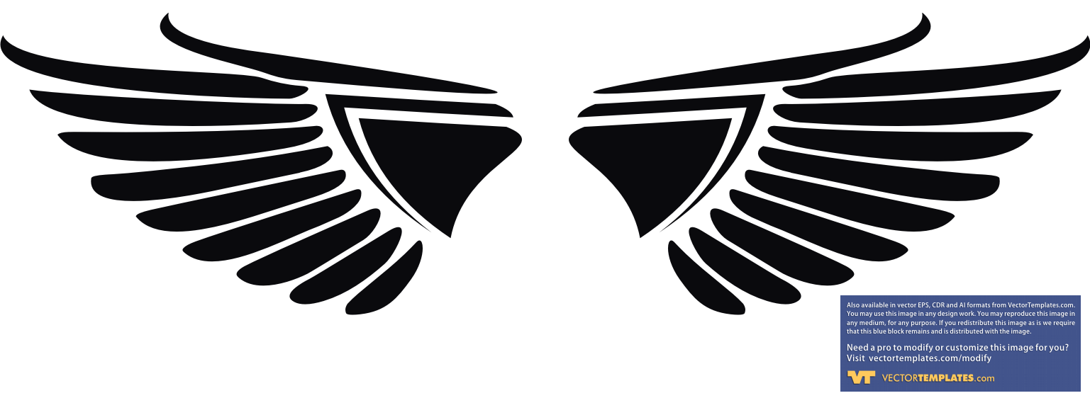 12 Eagle Wings Vector Images