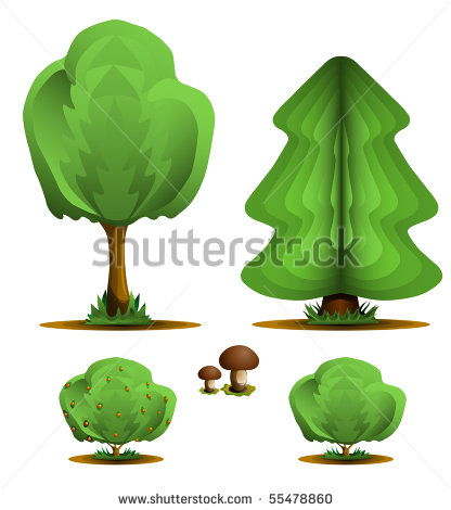 Tree and Shrub Illustrations