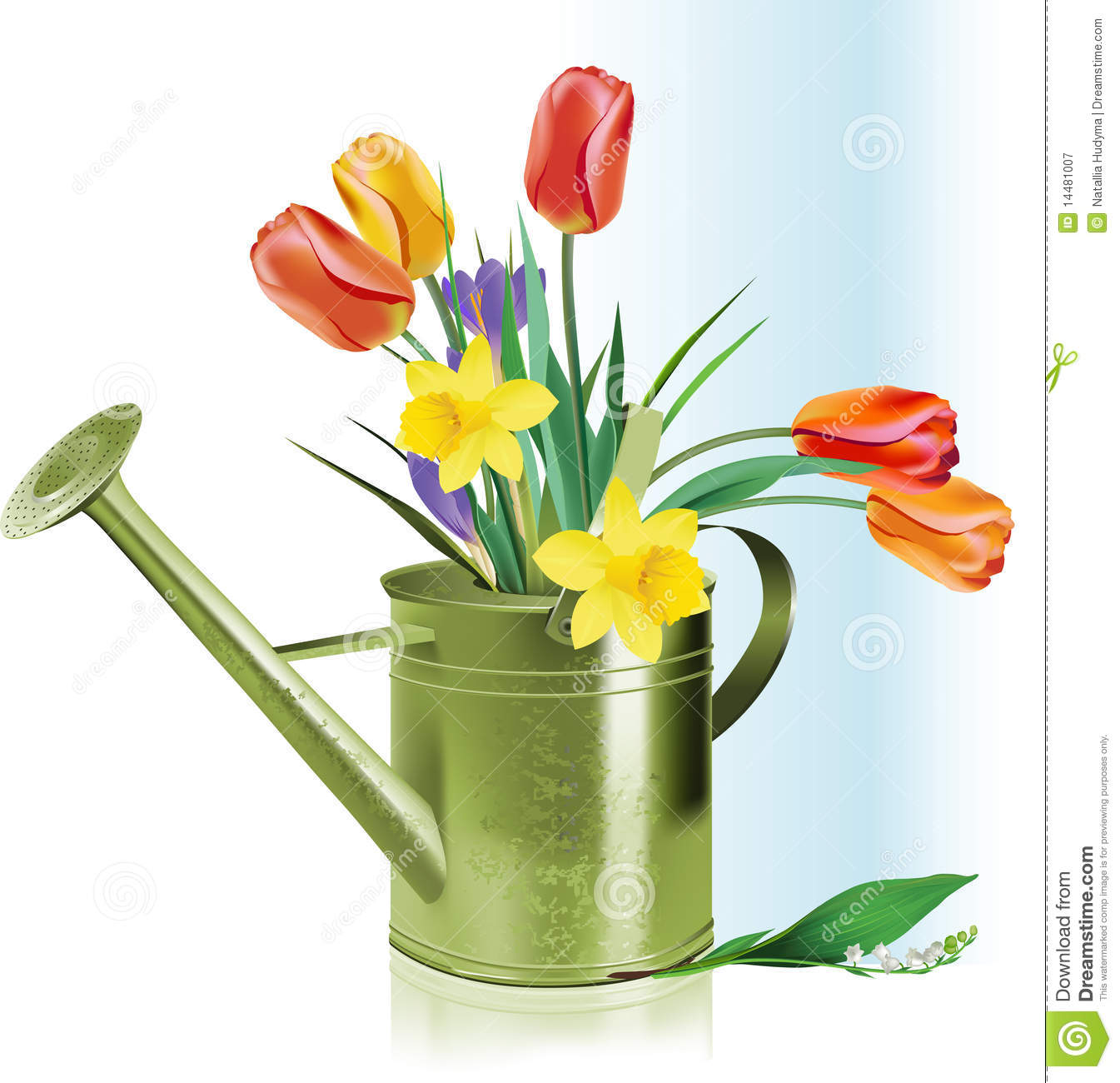 14 Watering Can With Flowers Vector Images