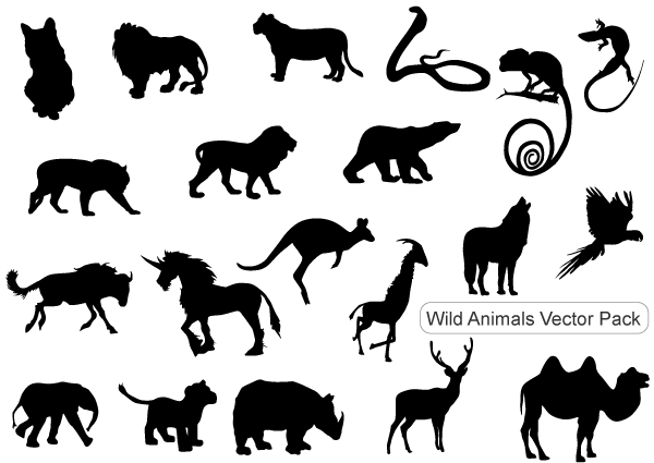 11 Wild Animals Vector Images