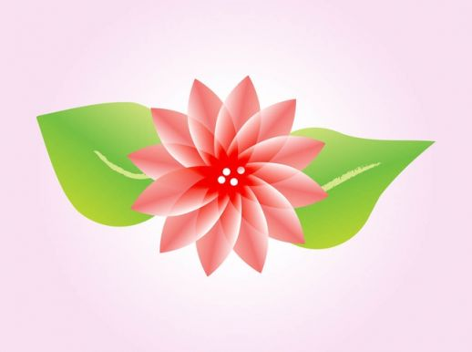 Lotus Flower Vector Graphic