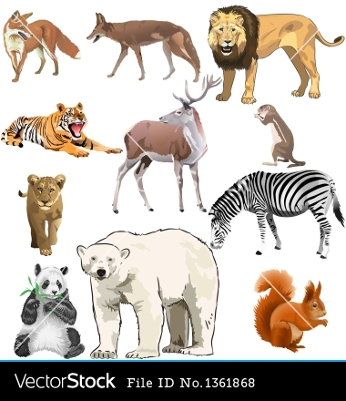 Photos Animals Vectors Downloads