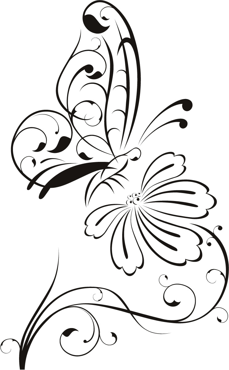 Butterfly On Flower Outline