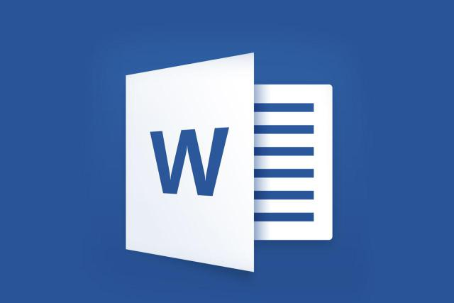 Microsoft Word 2013 Icon