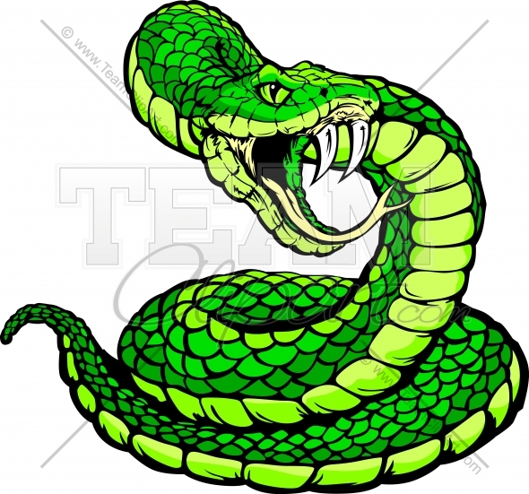 12 Viper Snake Graphics Images
