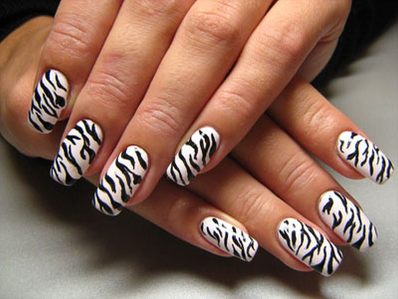 13 Zebra Nail Designs Images