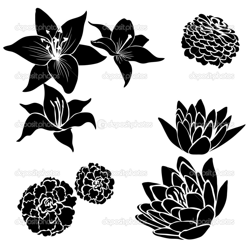 Black Floral Design Flower Vector