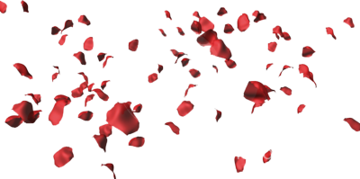 12 Red Rose Petals PSD Images