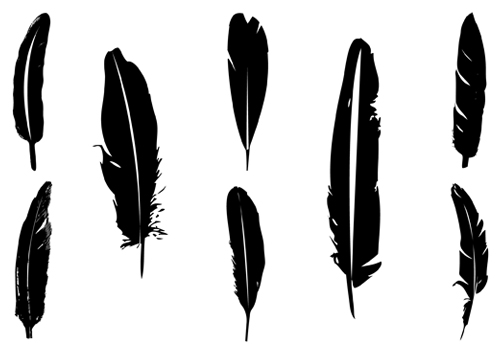 6 Indian Feather Vector Images